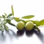オリーブオイルと腸の関係。その便秘解消効果を解説