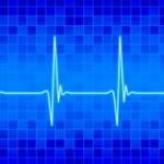 心臓の位置を図で解説!驚きの機能や働き!