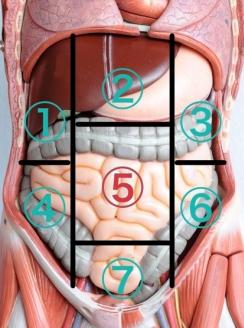 腸の痛み臍部