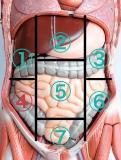 腸の痛み右下腹部