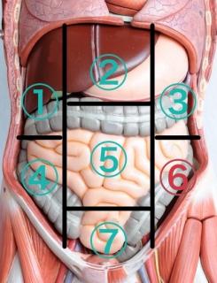 腸の痛み左下腹部