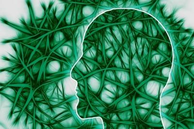 腸の調子が悪い原因 自律神経