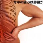 背中の痛みは膵炎や膵臓ガンが原因かも⁉︎病気や症状を解説