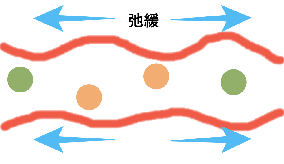 腸の運動 振子運動