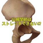 仙腸関節はストレッチできない?その働きや機能について解説!
