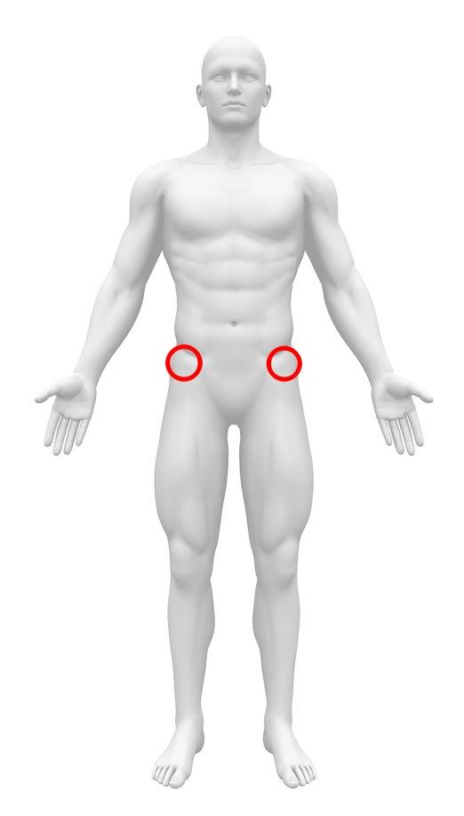上前腸骨棘 位置 体表から